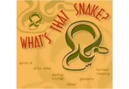 What's That Snake? image